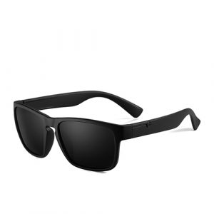 Men's Polarized Sunglasses - C2 Matte Black Smoke