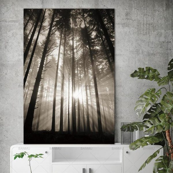 Canvas Wall Art - Sun Through Nordic Forest - 2