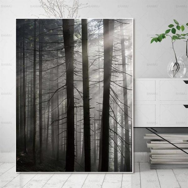 Canvas Wall Art - Sun Through Nordic Forest - 3