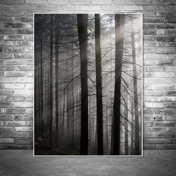 Canvas Wall Art - Sun Through Nordic Forest - 4