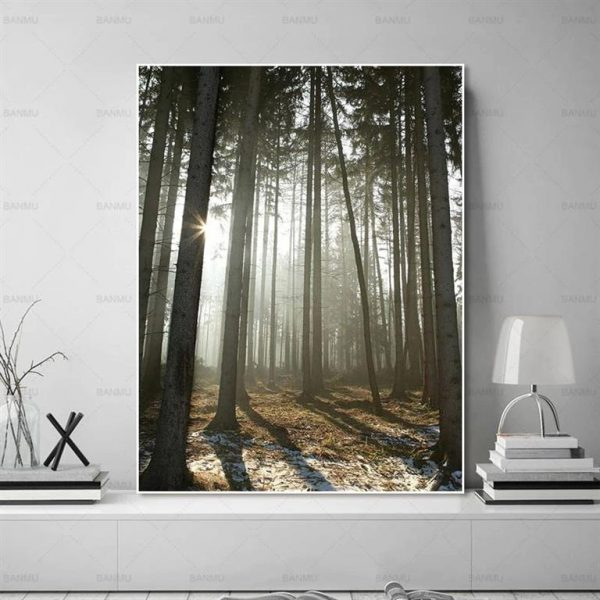 Canvas Wall Art - Sun Through Nordic Forest - 5