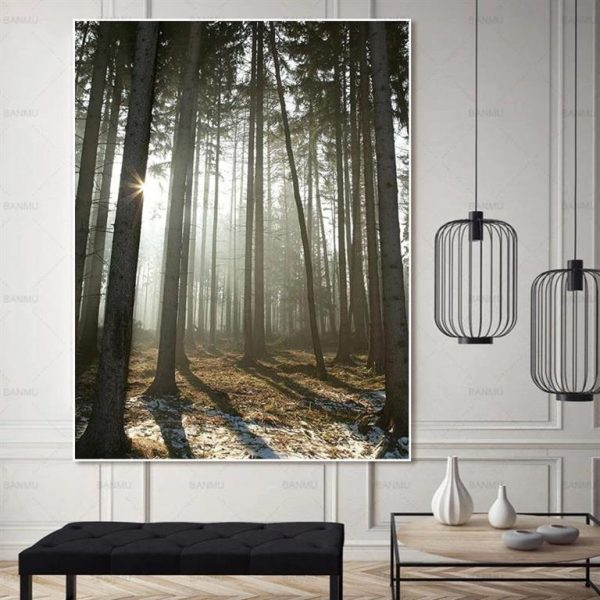 Canvas Wall Art - Sun Through Nordic Forest - 6
