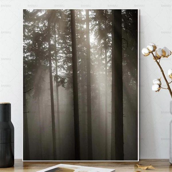 Canvas Wall Art - Sun Through Nordic Forest - 7