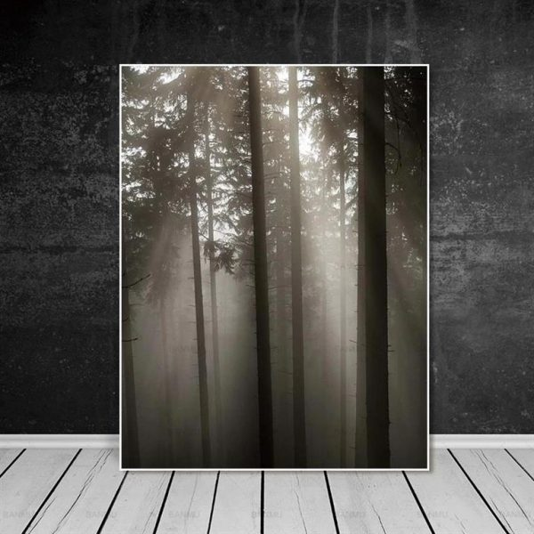 Canvas Wall Art - Sun Through Nordic Forest - 8