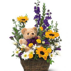 Basket & Bear Arrangement Blooms today