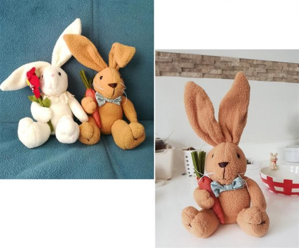 Cute Bunny Rabbit With Carrot - Sample