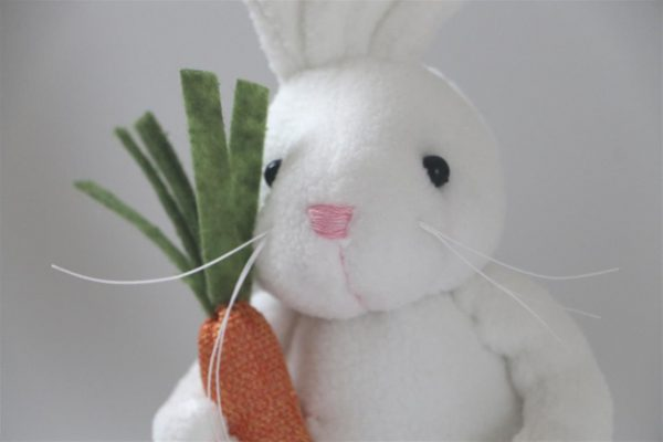 Cute Bunny Rabbit With Carrot - Whitecloseup