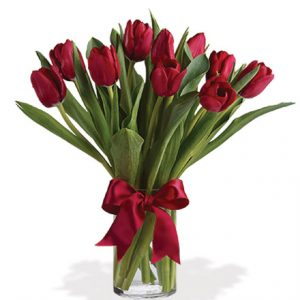 Radiantly Red Tulips Flower Delivery