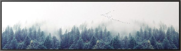 Single Canvas Nordic Forest Landscape