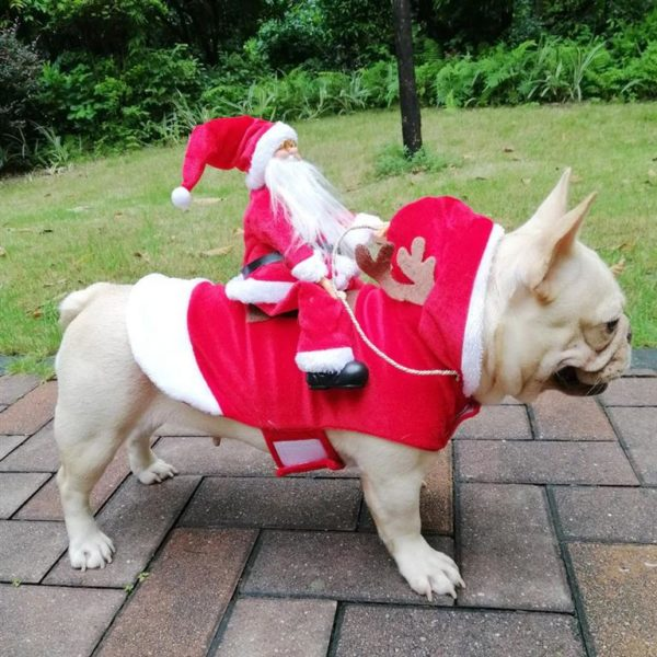 Christmas Costume For Dog - Santa Riding On Dog - 1