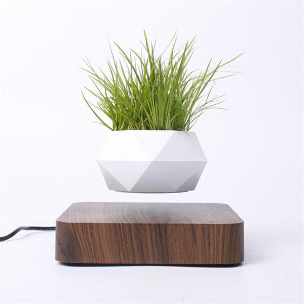 Levitating Pot Plant - 4