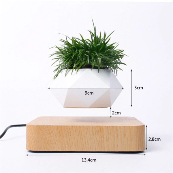 Levitating Pot Plant- size